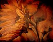 Dark-sunflower-sorin-apostolescu