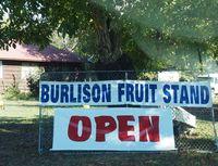 Burlison open