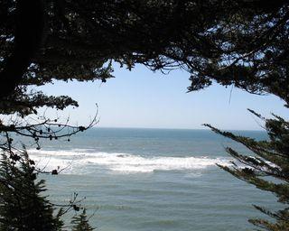 8x10 cal coast